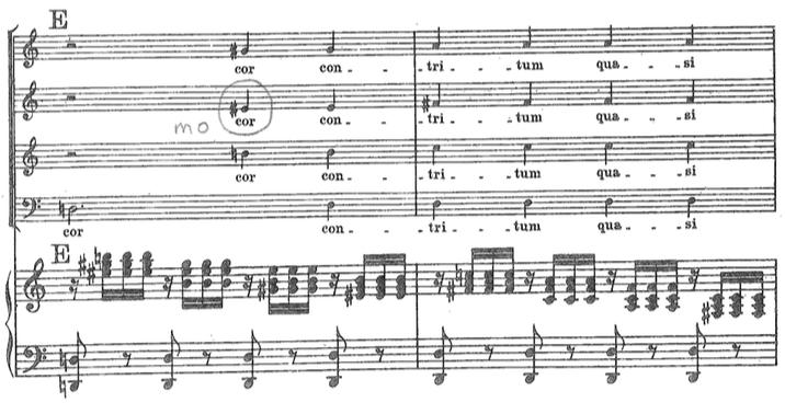 Solfège With Amadeus | Walter Bitner
