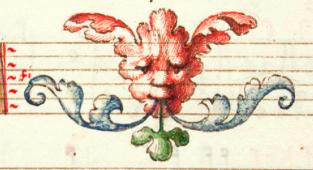 capirolaflowerface